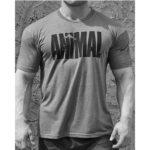siva Animal